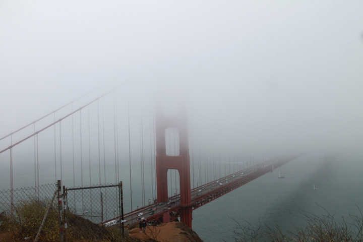 Places you HAVE to Go to in SanFrancisco!