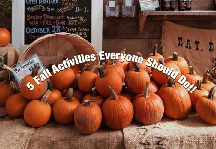 5 Fall Activities Everyone Should Do!!