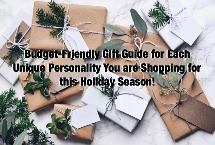Budget-Friendly Gift Guide for Each Unique Personality You are Shopping for this Holiday Season